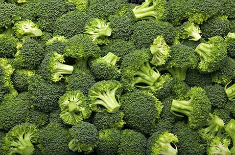 an image of lots of cut broccoli
